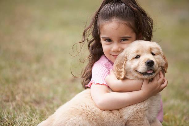 Petite fille qui fait un câlin à un labrador chiot